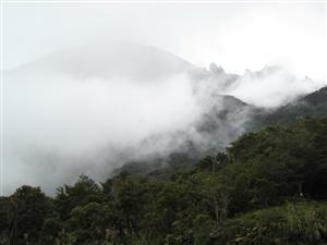 Mount Kinabalu in the mist